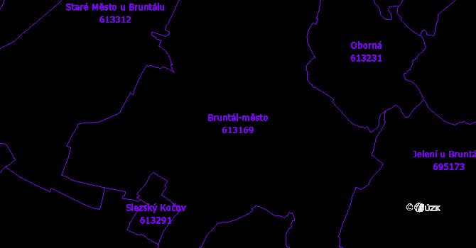 Katastrální mapa Bruntál-město - přehledová mapa katastrálního území