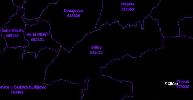 Katastrální mapa Břilice - přehledová mapa katastrálního území