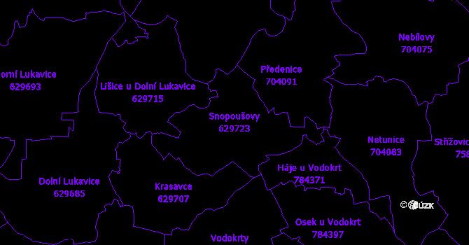 Katastrální mapa Snopoušovy - přehledová mapa katastrálního území
