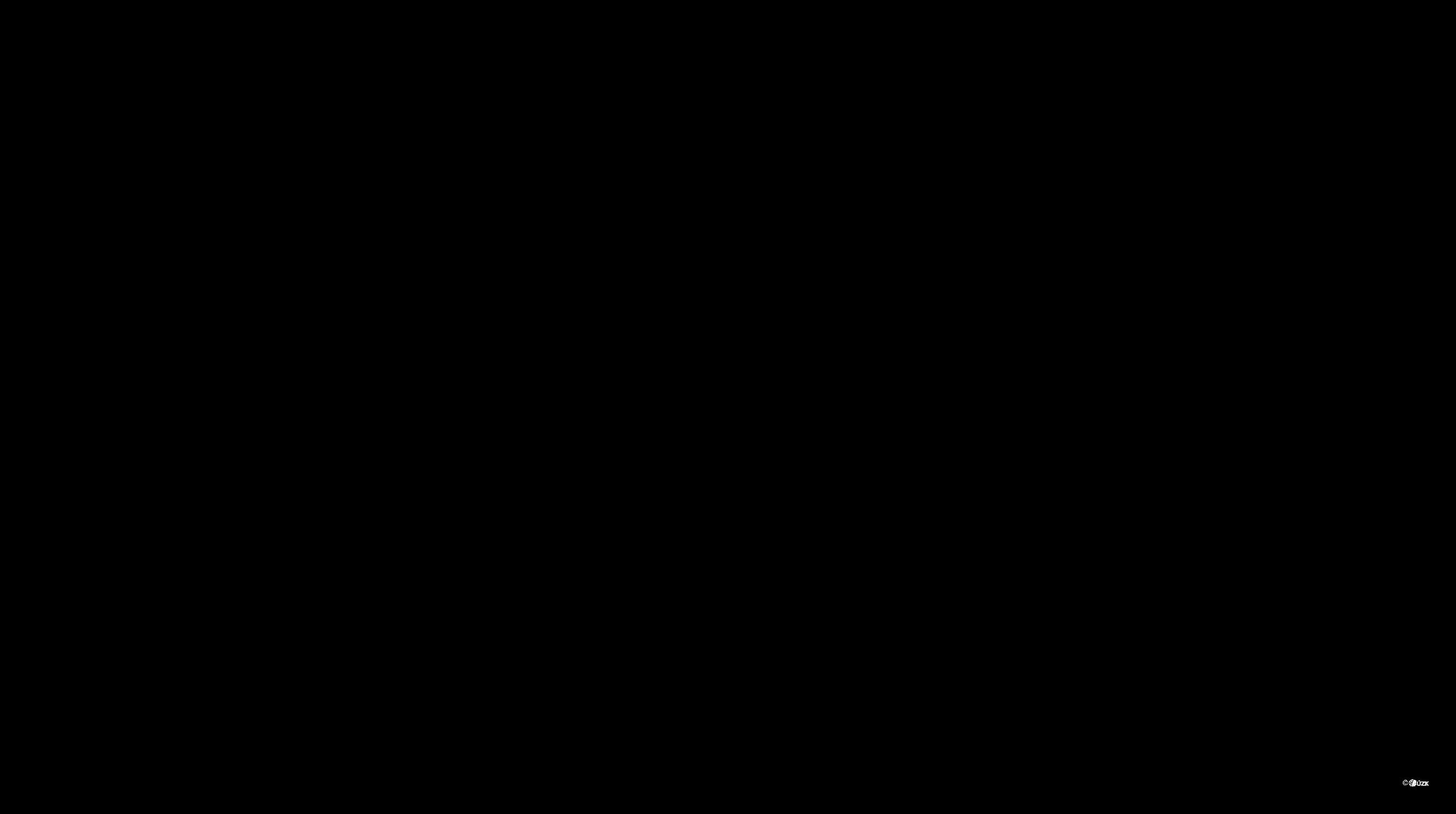 Katastrální mapa pozemků a čísla parcel Zbečník
