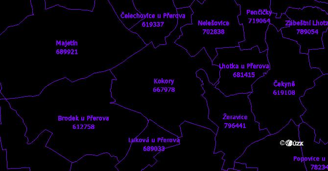 Katastrální mapa Kokory - přehledová mapa katastrálního území