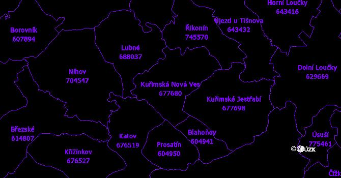 Katastrální mapa Kuřimská Nová Ves - přehledová mapa katastrálního území