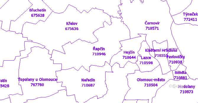 Katastrální mapa Řepčín - přehledová mapa katastrálního území