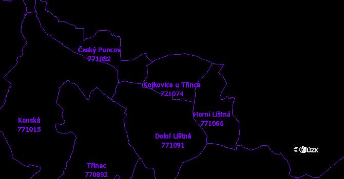 Katastrální mapa Kojkovice u Třince - přehledová mapa katastrálního území