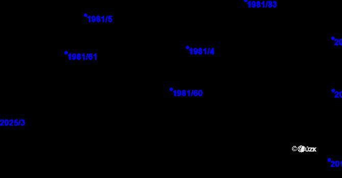 Parcela st. 1981/60 v k.ú. Nivnice, Katastrální mapa