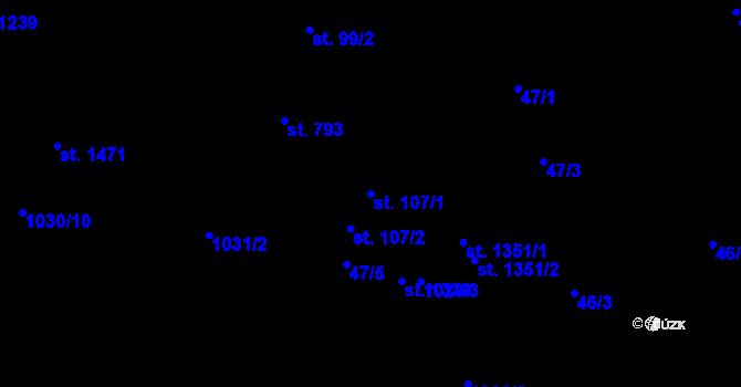Parcela st. 107/1 v k.ú. Nová Role, Katastrální mapa