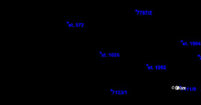 Parcela st. 1025 v k.ú. Slavonice, Katastrální mapa