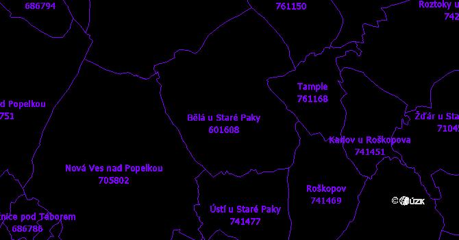 Katastrální mapa Bělá