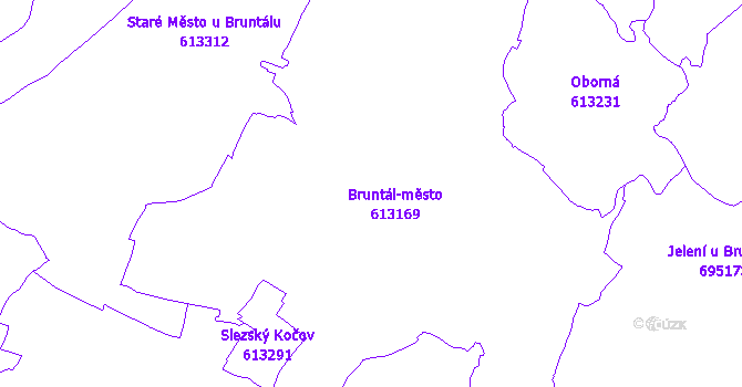 Katastrální mapa Bruntál