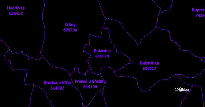 Katastrální mapa Bukovina