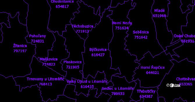 Katastrální mapa Býčkovice