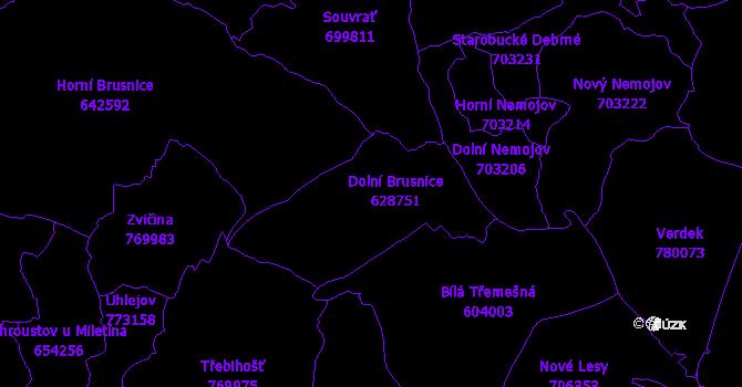 Katastrální mapa Dolní Brusnice