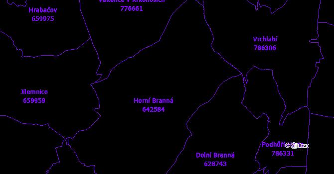 Katastrální mapa Horní Branná