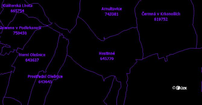 Katastrální mapa Hostinné
