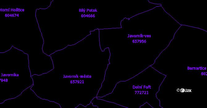 Katastrální mapa Javorník