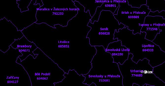 Katastrální mapa Litošice