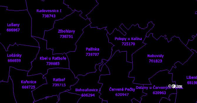 Katastrální mapa Pašinka