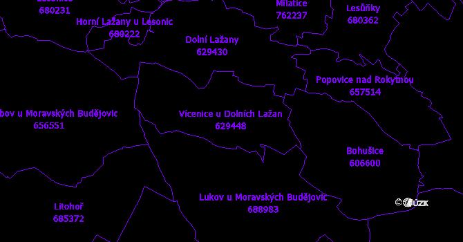 Katastrální mapa Vícenice