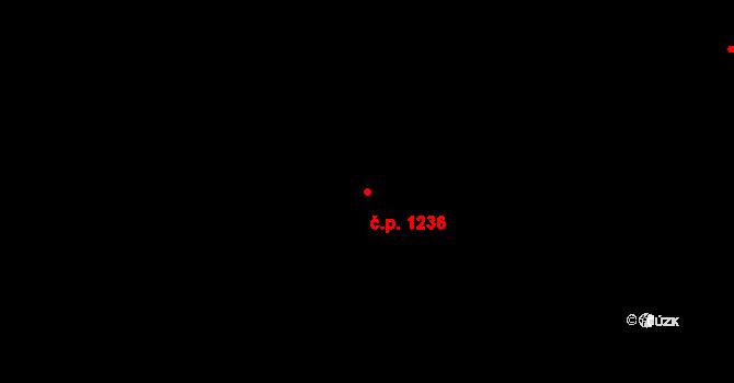 Hradec Králové 1236 na parcele st. 1342 v KÚ Hradec Králové, Katastrální mapa