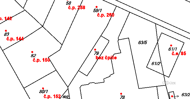 Brno 43394744 na parcele st. 79 v KÚ Černovice, Katastrální mapa