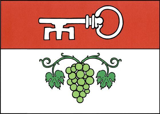 Brno-Bohunice - vlajka