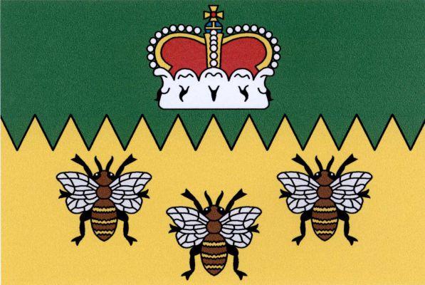 Bynovec - vlajka