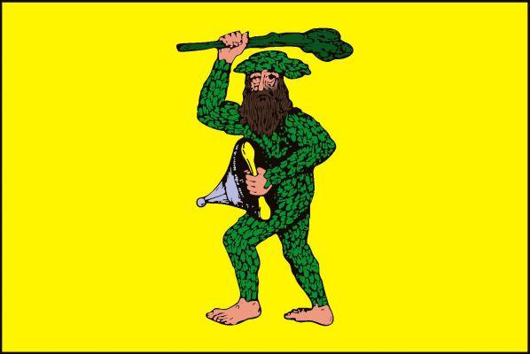 Chotusice - vlajka