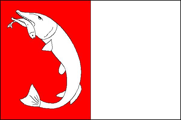 Dolní Benešov - vlajka