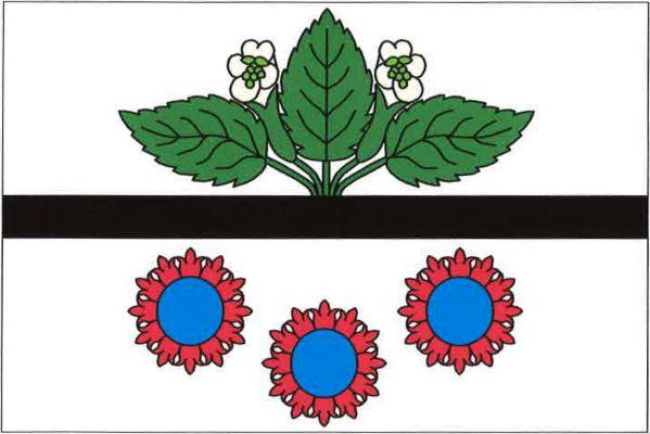 Doubravice - vlajka