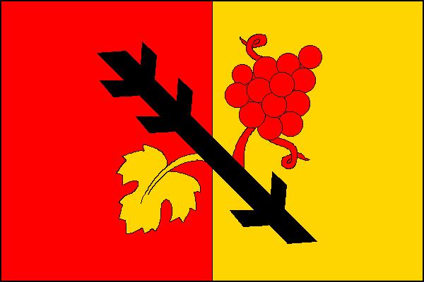 Gruna - vlajka