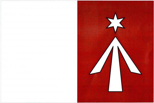 Javorník - vlajka