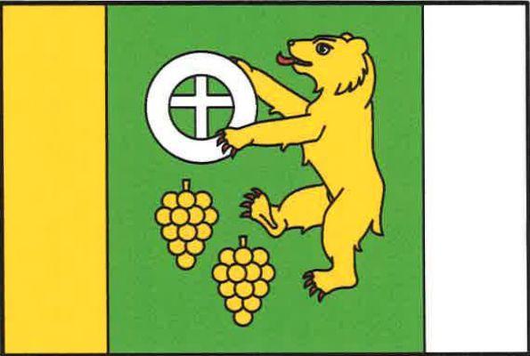 Karlín - vlajka