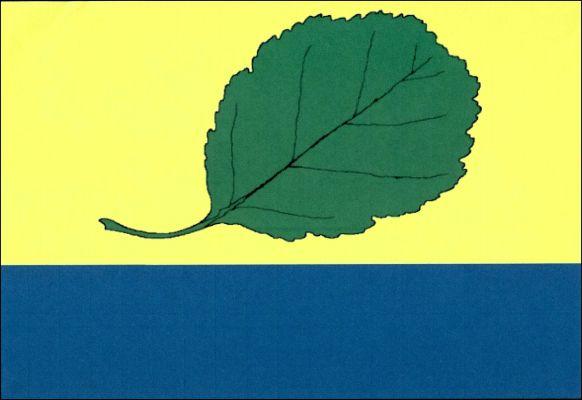 Leštinka - vlajka