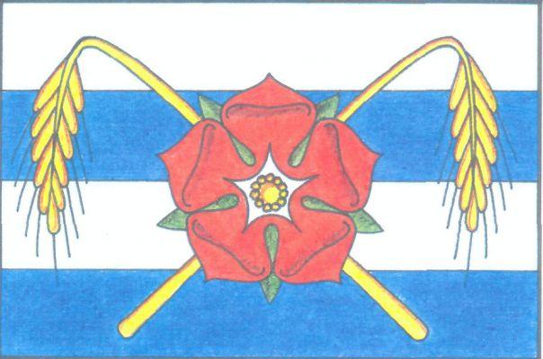 Neplachov - vlajka