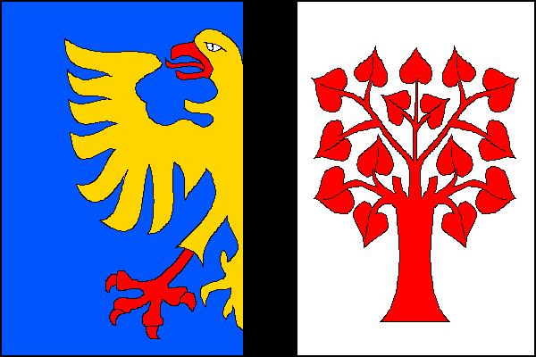 Orlová - vlajka