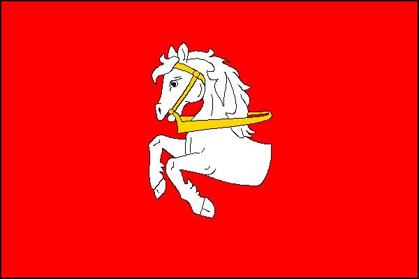 Pardubice - vlajka