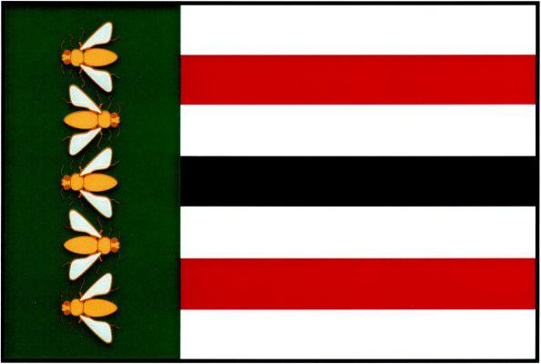 Pátek - vlajka