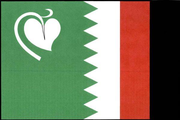 Pila - vlajka