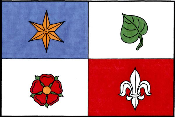 Plasy - vlajka