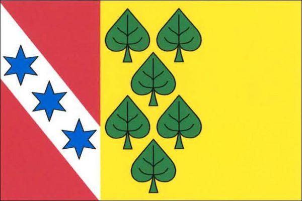 Prosenická Lhota - vlajka