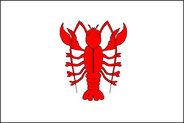Rakovník - vlajka