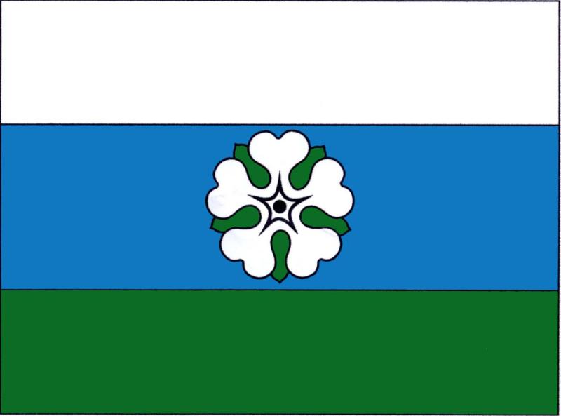 Slaná - vlajka