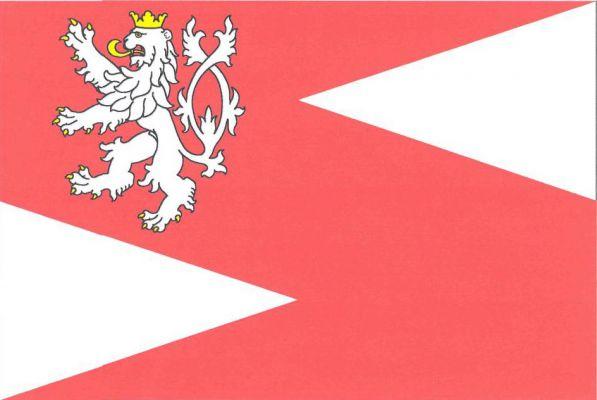 Slaný - vlajka
