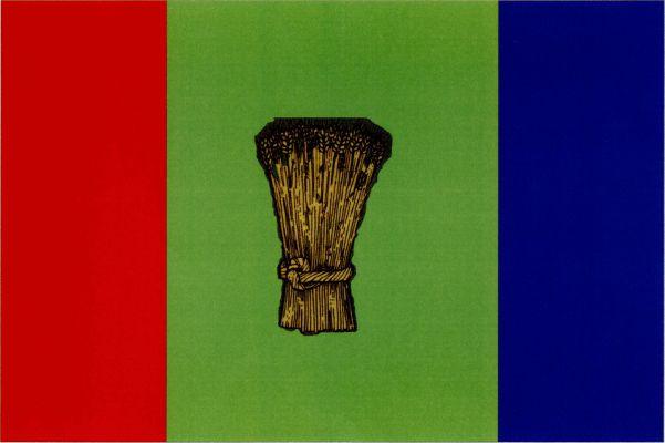 Suchov - vlajka