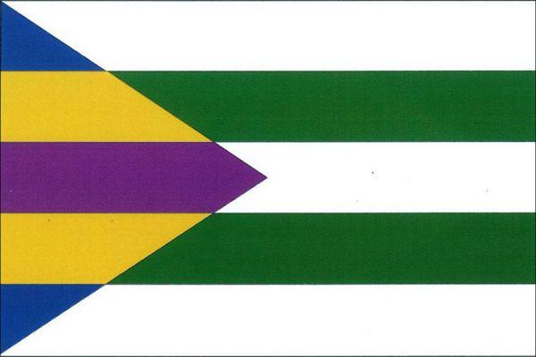 Toužetín - vlajka