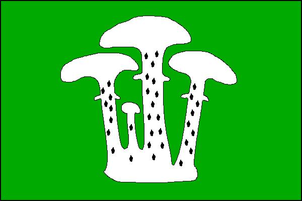 Václavy - vlajka