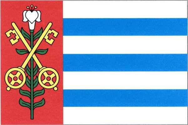 Vrutice - vlajka