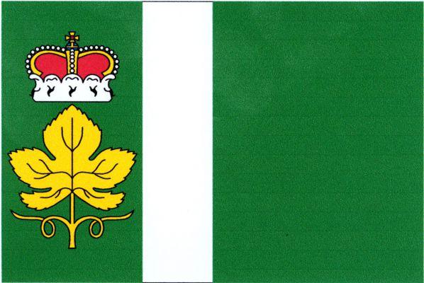 Židovice - vlajka