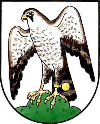 Sokolov - znak